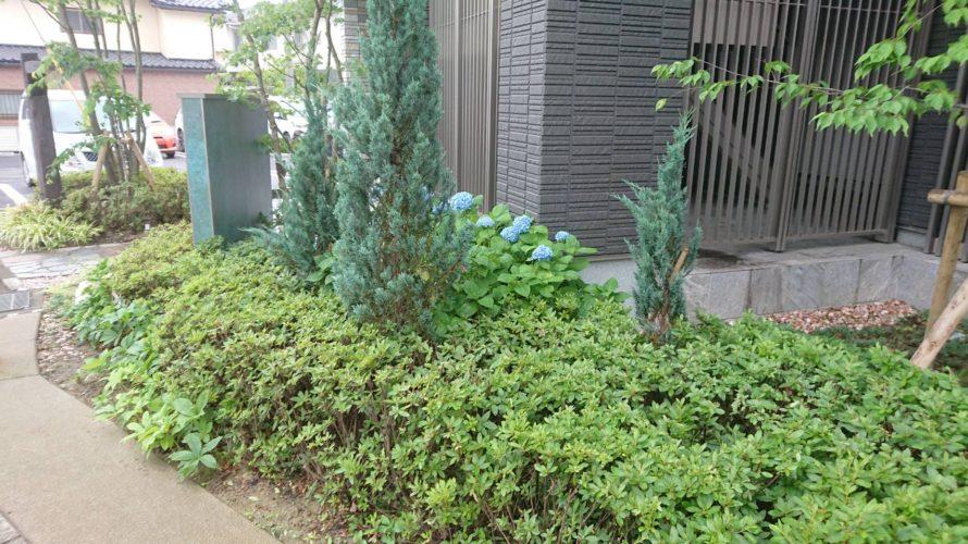 アパートの植栽維持管理作業